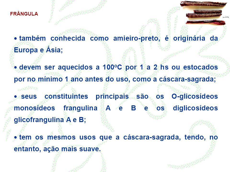 FRÂNGULA também conhecida como amieiro-preto, é originária da Europa e Ásia; devem ser aquecidos a 100 o C por 1 a 2 hs ou estocados por no mínimo 1 a