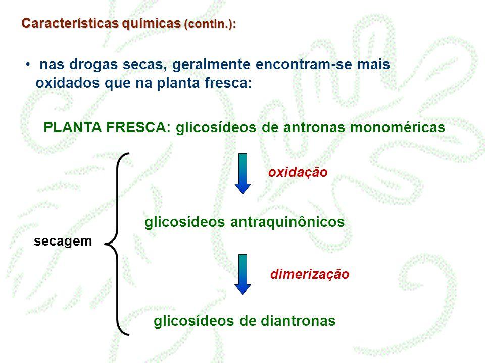 Características químicas (contin.): nas drogas secas, geralmente encontram-se mais oxidados que na planta fresca: PLANTA FRESCA: glicosídeos de antron