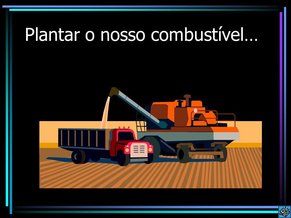 Plantar o nosso combustível…