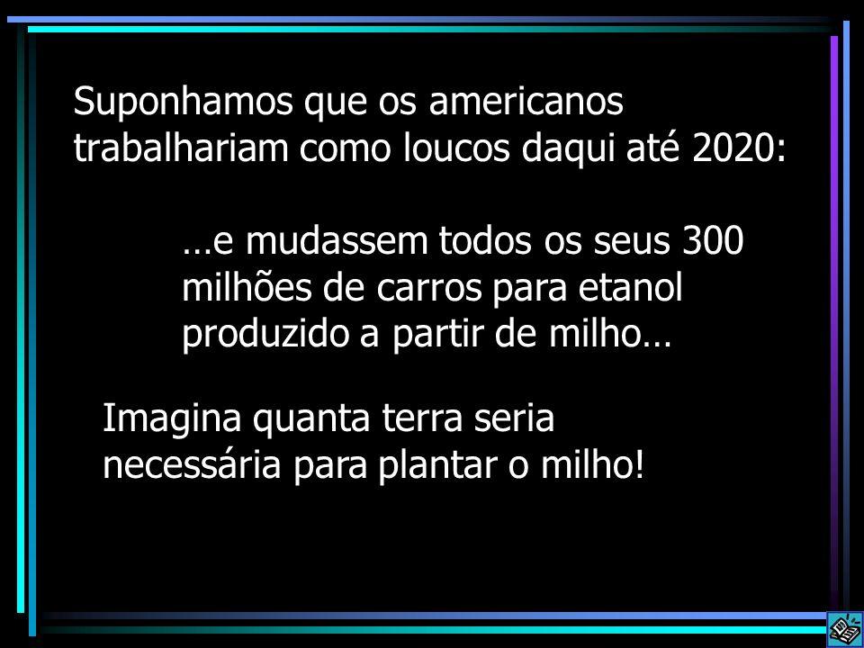 Suponhamos que os americanos trabalhariam como loucos daqui até 2020: …e mudassem todos os seus 300 milhões de carros para etanol produzido a partir d
