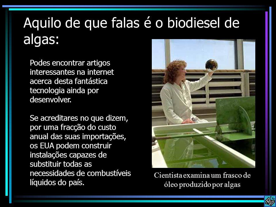 Aquilo de que falas é o biodiesel de algas: Podes encontrar artigos interessantes na internet acerca desta fantástica tecnologia ainda por desenvolver