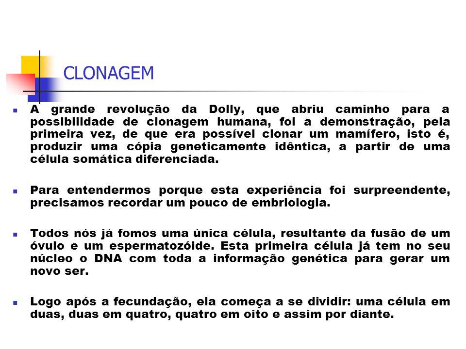 CLONAGEM A grande revolução da Dolly, que abriu caminho para a possibilidade de clonagem humana, foi a demonstração, pela primeira vez, de que era pos