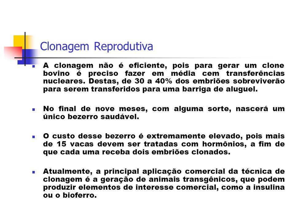 Clonagem Reprodutiva A clonagem não é eficiente, pois para gerar um clone bovino é preciso fazer em média cem transferências nucleares. Destas, de 30