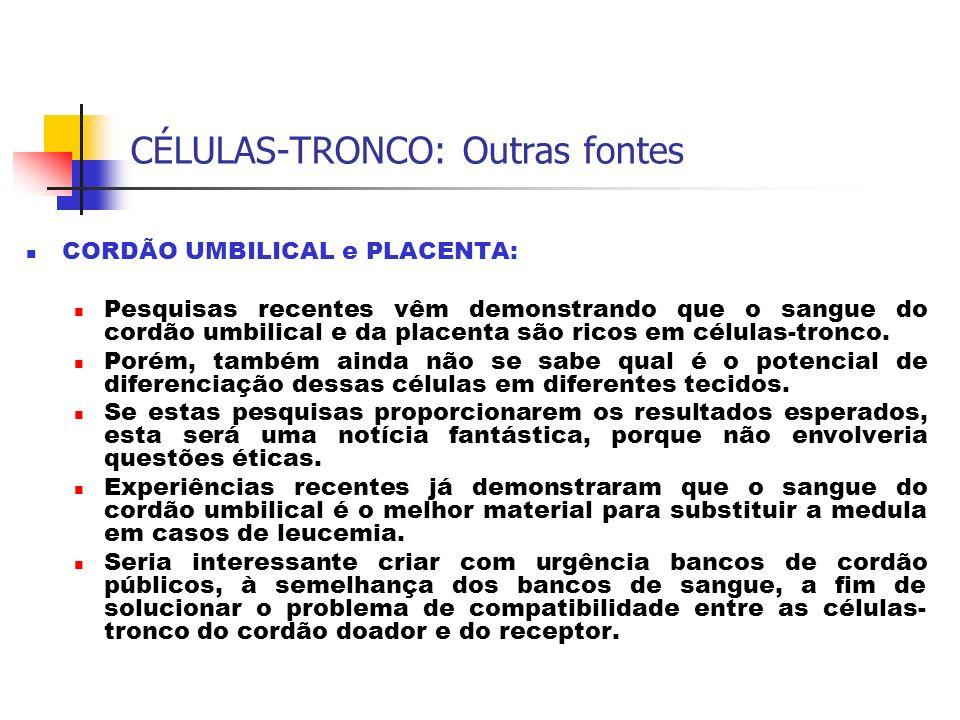 CÉLULAS-TRONCO: Outras fontes CORDÃO UMBILICAL e PLACENTA: Pesquisas recentes vêm demonstrando que o sangue do cordão umbilical e da placenta são rico