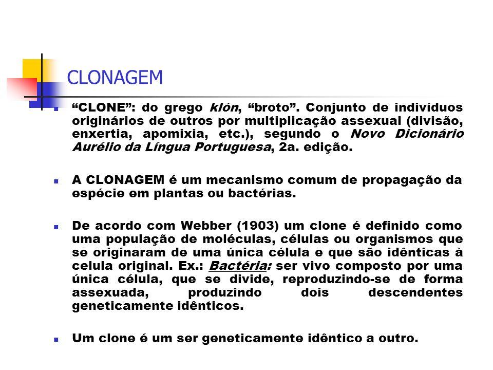 CLONAGEM CLONE: do grego klón, broto. Conjunto de indivíduos originários de outros por multiplicação assexual (divisão, enxertia, apomixia, etc.), seg