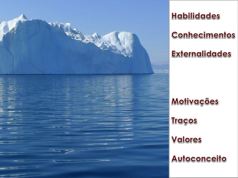 Apreciação subjetiva, que revela as preferências de cada pessoa, segundo suas tendências e influências;