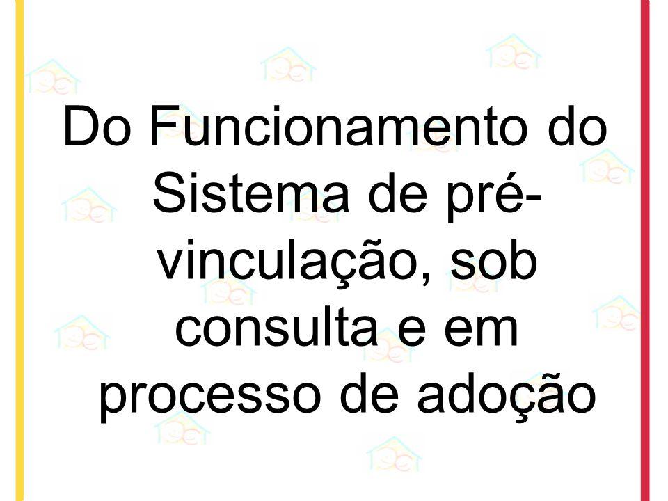 Do Funcionamento do Sistema de pré- vinculação, sob consulta e em processo de adoção