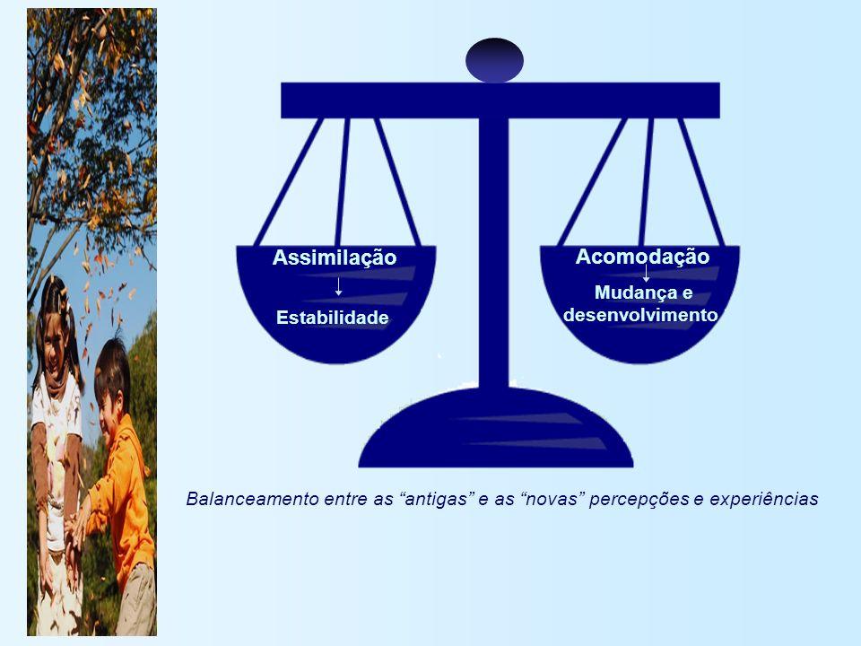 Assimilação Acomodação Estabilidade Mudança e desenvolvimento Balanceamento entre as antigas e as novas percepções e experiências