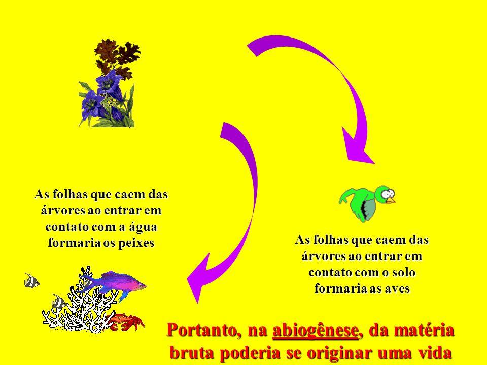 As folhas que caem das árvores ao entrar em contato com a água formaria os peixes As folhas que caem das árvores ao entrar em contato com o solo formaria as aves Portanto, na abiogênese, da matéria bruta poderia se originar uma vida