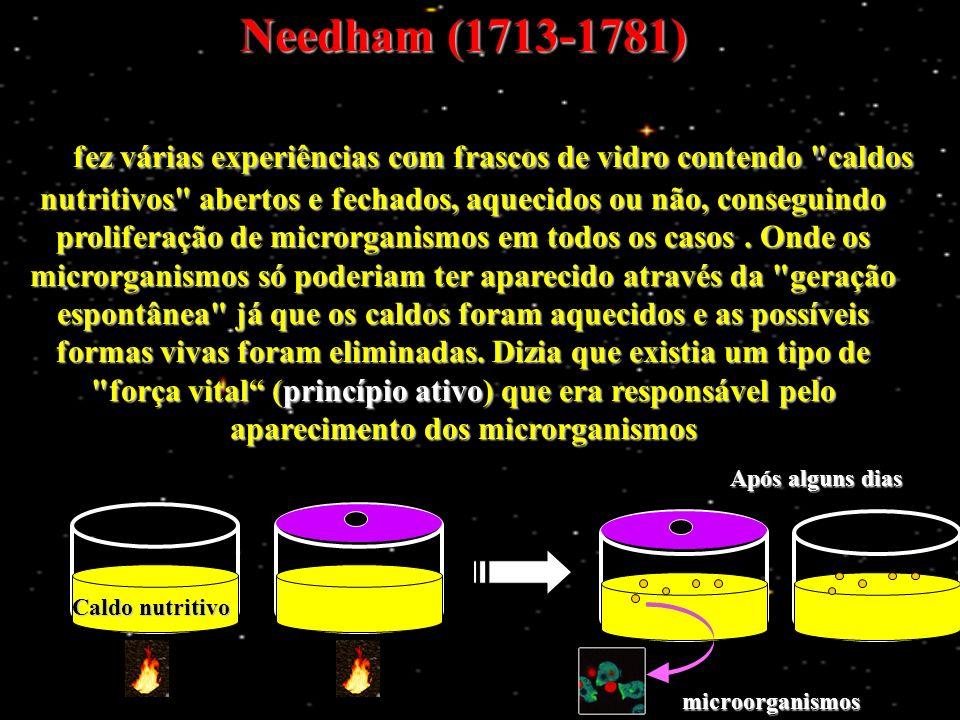 Os primeiros seres vivos eram heterótrofos O Oxigênio O 2 Formou o Ozônio O 3 (Que retém as radiações) O que permitiu com o oxigênio...