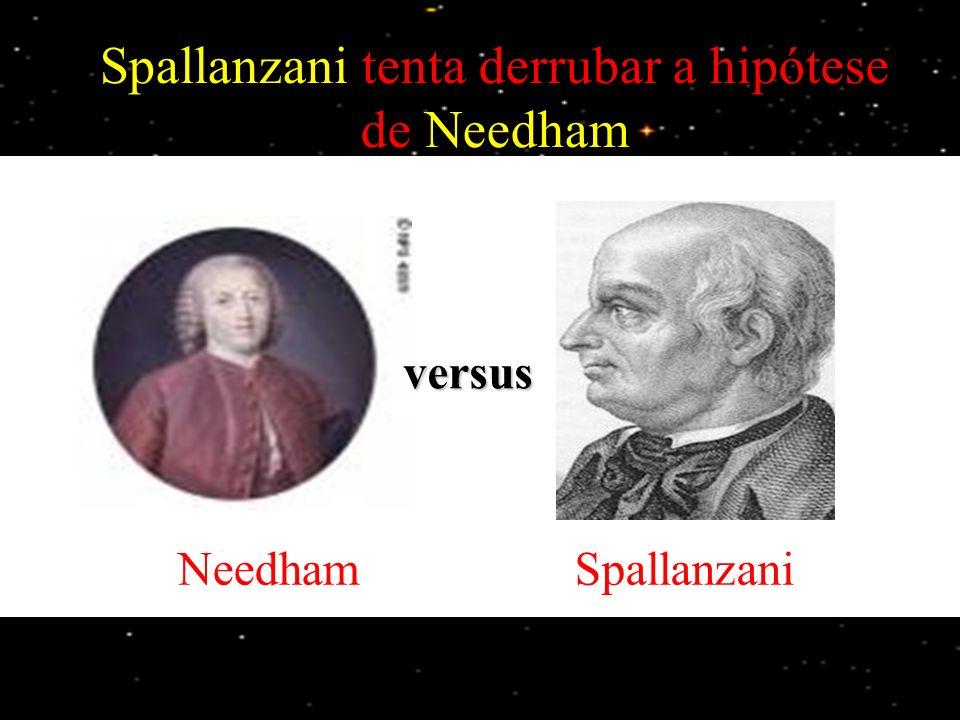Spallanzani tenta derrubar a hipótese de Needham Spallanzani mostrou que os micróbios têm origem no ar e que podem ser eliminados por fervura.