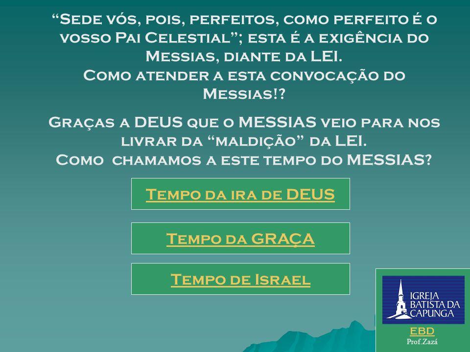 Na análise dos ensinos rabínicos acerca dos principais pontos da LEI, o Mestre apresenta a perfeição da LEI, no sentido de gerar a plena unidade do po