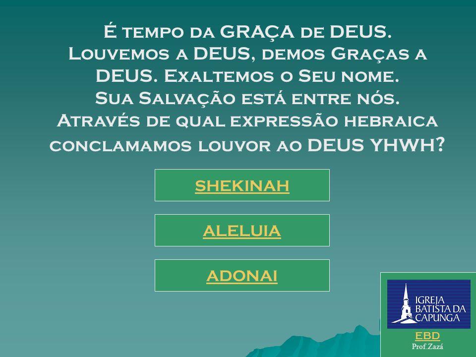 Sede vós, pois, perfeitos, como perfeito é o vosso Pai Celestial; esta é a exigência do Messias, diante da LEI. Como atender a esta convocação do Mess