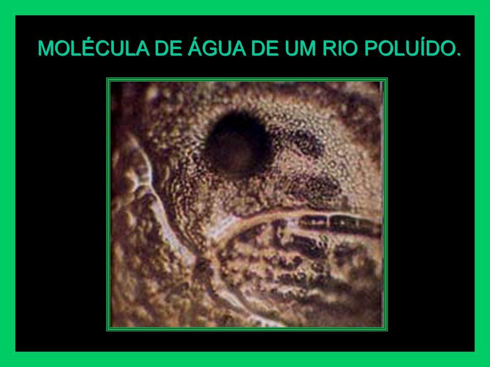 MOLÉCULA DE ÁGUA DE UM RIO POLUÍDO.