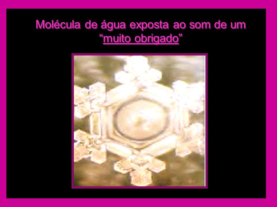 Molécula de água exposta ao som de ummuito obrigado