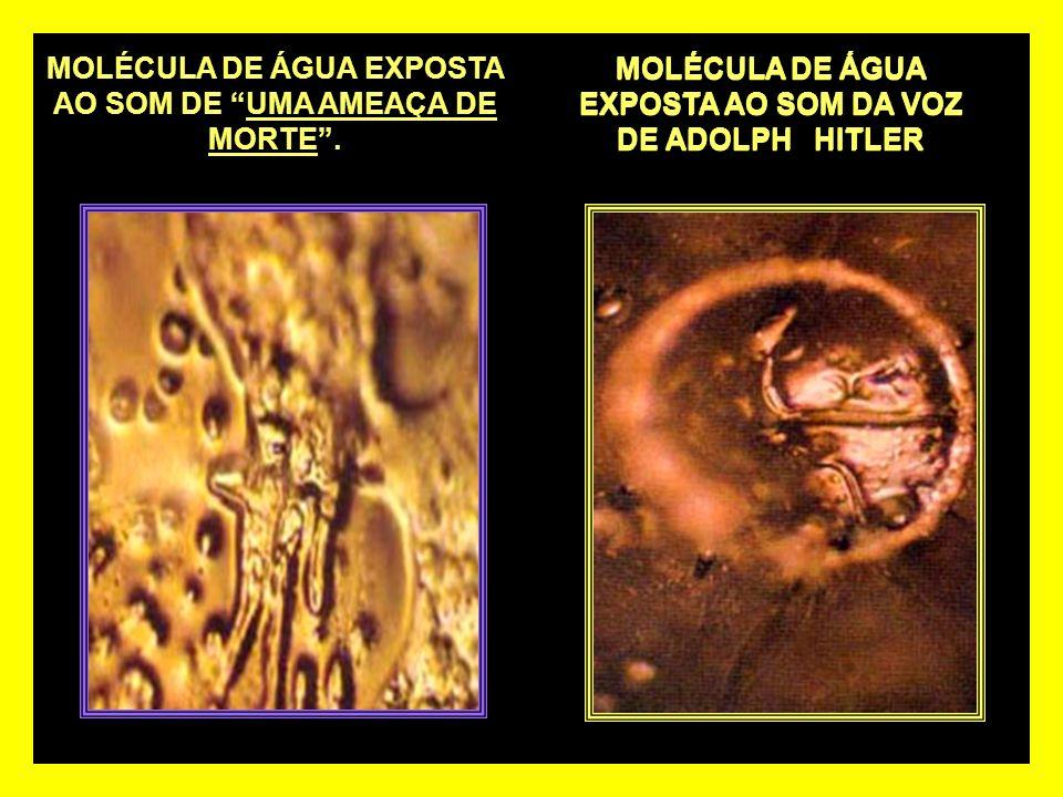 MOLÉCULA DE ÁGUA EXPOSTA AO SOM DA VOZ DE ADOLPH HITLER MOLÉCULA DE ÁGUA EXPOSTA AO SOM DE UMA AMEAÇA DE MORTE.