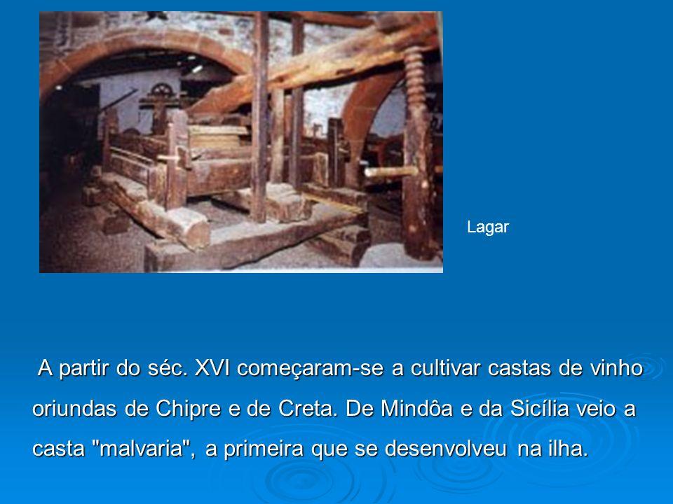 A partir do séc. XVI começaram-se a cultivar castas de vinho oriundas de Chipre e de Creta. De Mindôa e da Sicília veio a casta