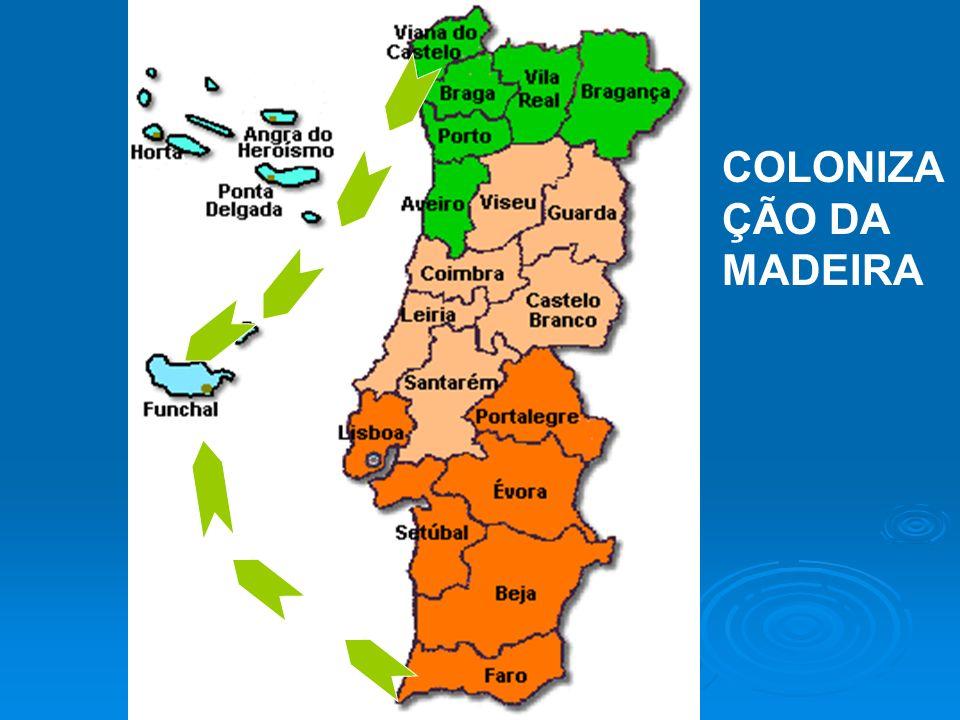 COLONIZA ÇÃO DA MADEIRA