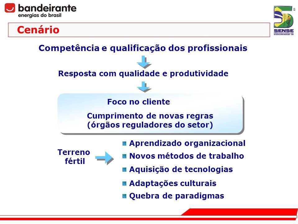 Competência e qualificação dos profissionais Terreno fértil Aprendizado organizacional Novos métodos de trabalho Aquisição de tecnologias Quebra de pa
