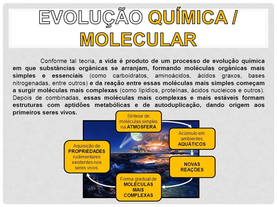 Conforme tal teoria, a vida é produto de um processo de evolução química em que substâncias orgânicas se arranjam, formando moléculas orgânicas mais s