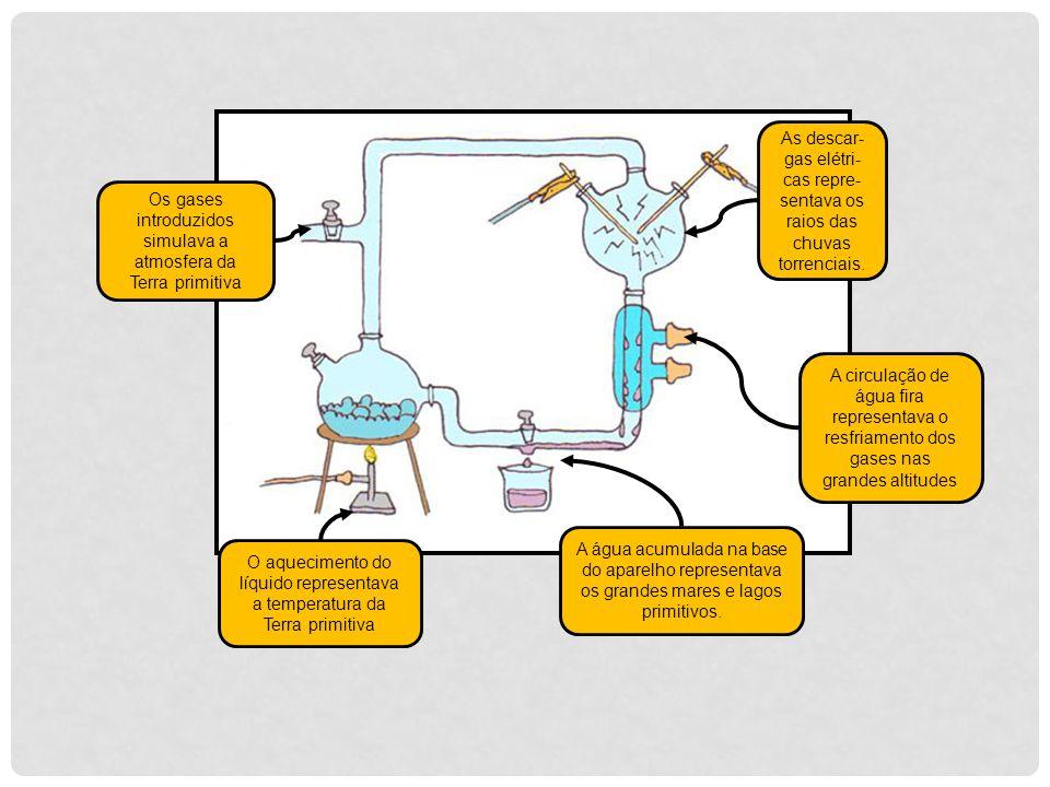 Os gases introduzidos simulava a atmosfera da Terra primitiva O aquecimento do líquido representava a temperatura da Terra primitiva As descar- gas el