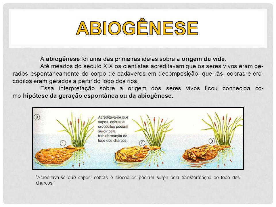 A abiogênese foi uma das primeiras ideias sobre a origem da vida. Até meados do século XIX os cientistas acreditavam que os seres vivos eram ge- rados