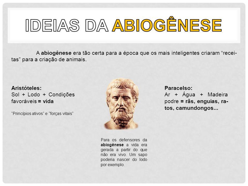 A abiogênese era tão certa para a época que os mais inteligentes criaram recei- tas para a criação de animais. Aristóteles: Sol + Lodo + Condições fav