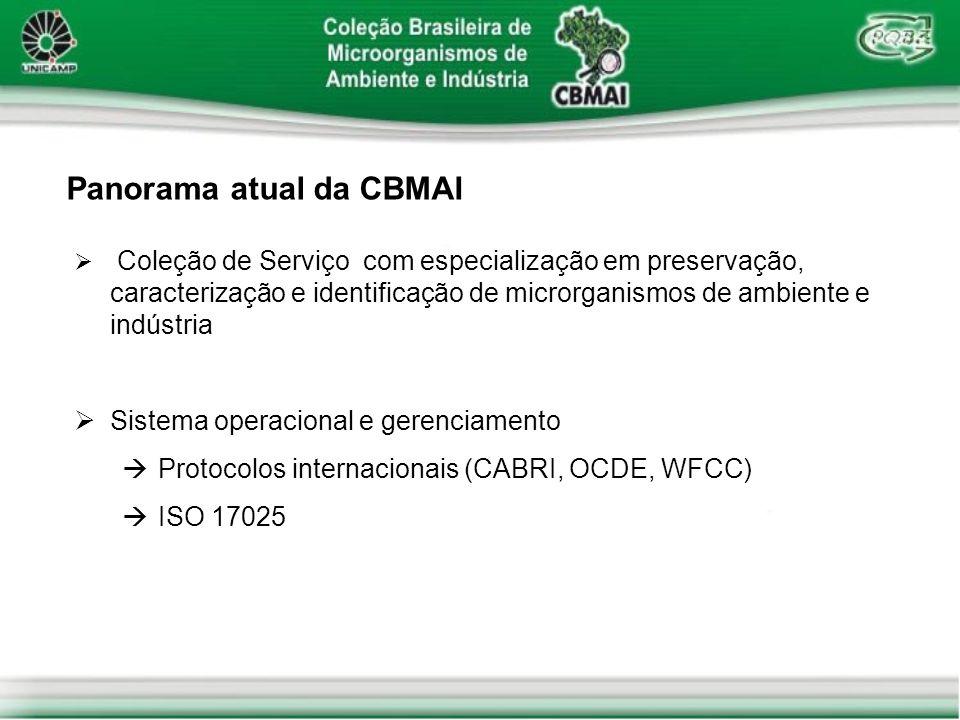 Panorama atual da CBMAI Escopo do acervo Bactérias, fungos filamentosos, leveduras e plasmídeos em células hospedeiras Grupos de risco 1 e 2 (Diretiva 93/88/EEC) OGMs: grupos 1 e 2 (CTNBio) e classes 1 e 2 (Diretiva 98/81/EEC) Sistema informatizado de gerenciamento de acervo incorporação de dados diversificados junto ao registro das linhagens catálogo on-line (www.cpqba.unicamp.br/cbmai)www.cpqba.unicamp.br/cbmai