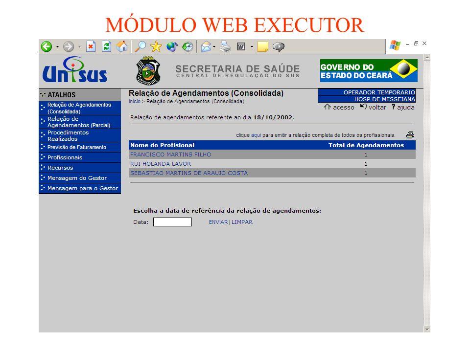 MÓDULO WEB EXECUTOR