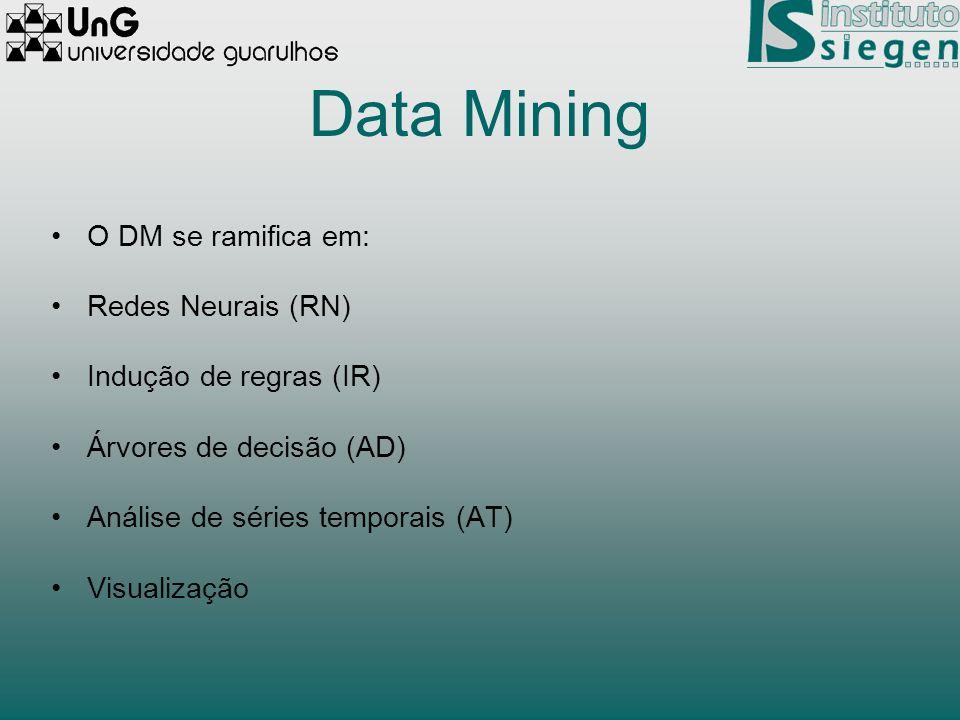 Data Mining O DM se ramifica em: Redes Neurais (RN) Indução de regras (IR) Árvores de decisão (AD) Análise de séries temporais (AT) Visualização