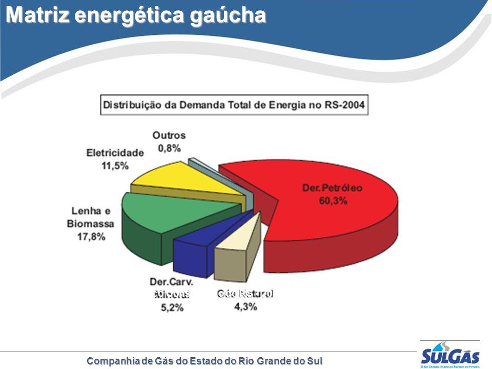 Companhia de Gás do Estado do Rio Grande do Sul Fonte: Balanço Energético Consolidado do RS - 2004 Matriz energética gaúcha