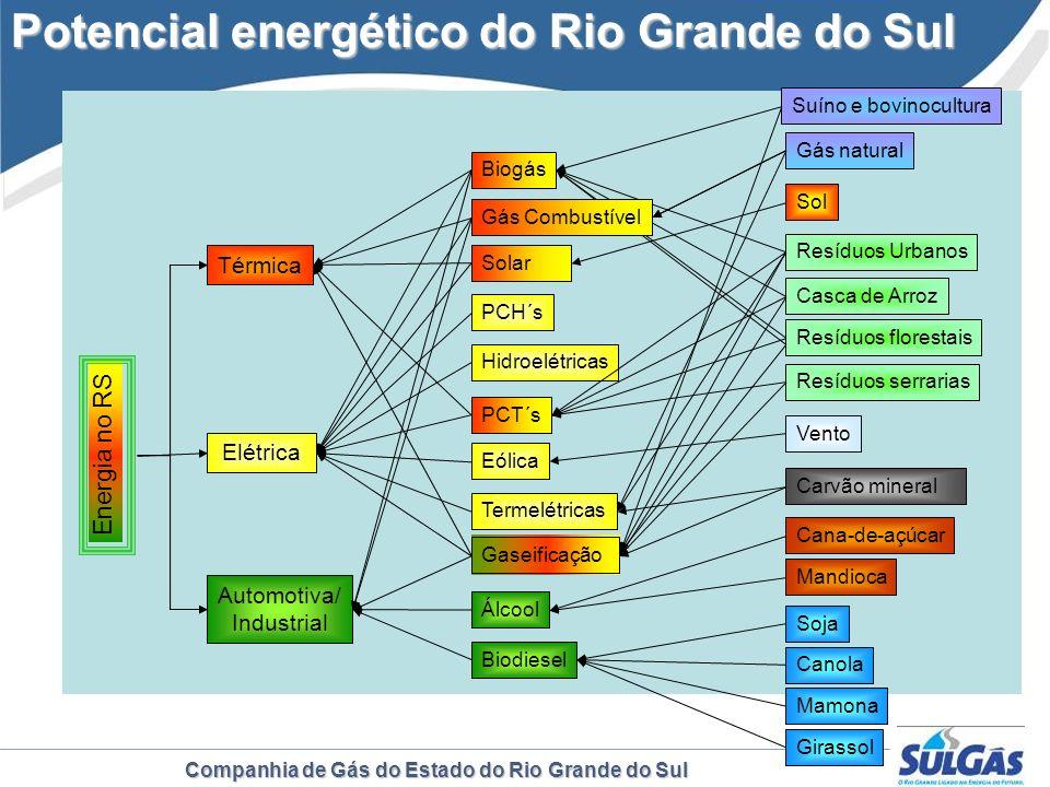 Companhia de Gás do Estado do Rio Grande do Sul Energia no RS Térmica Elétrica Automotiva/ Industrial Biogás Biodiesel Álcool Hidroelétricas PCH´s PCT