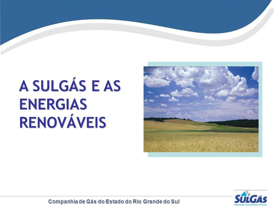 Companhia de Gás do Estado do Rio Grande do Sul A SULGÁS E AS ENERGIAS RENOVÁVEIS