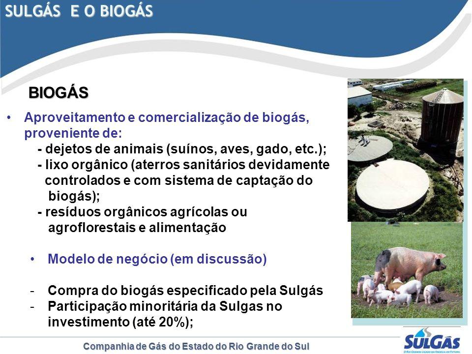 Companhia de Gás do Estado do Rio Grande do Sul SULGÁS E O BIOGÁS BIOGÁS BIOGÁS Aproveitamento e comercialização de biogás, proveniente de: - dejetos
