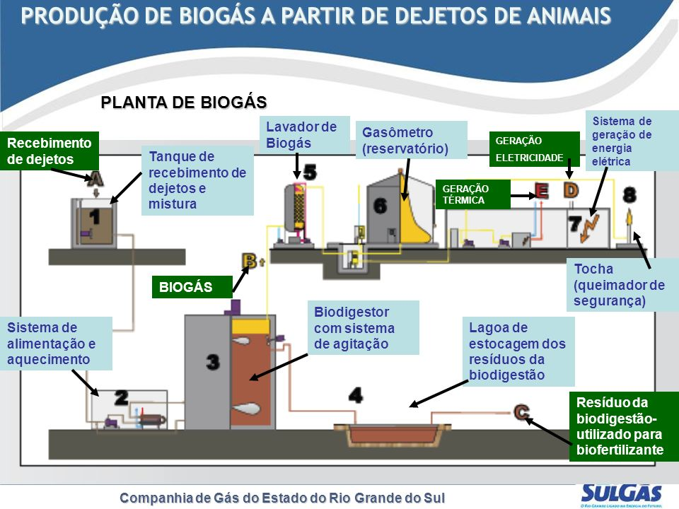 Companhia de Gás do Estado do Rio Grande do Sul PLANTA DE BIOGÁS PRODUÇÃO DE BIOGÁS A PARTIR DE DEJETOS DE ANIMAIS PRODUÇÃO DE BIOGÁS A PARTIR DE DEJE