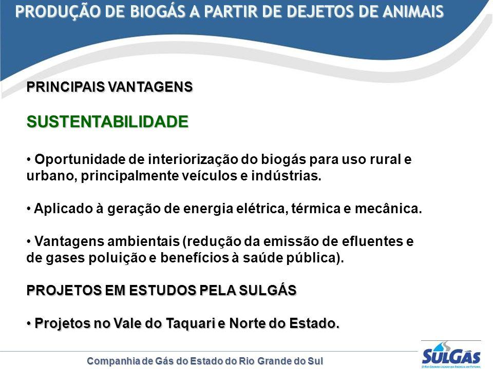 Companhia de Gás do Estado do Rio Grande do Sul PRODUÇÃO DE BIOGÁS A PARTIR DE DEJETOS DE ANIMAIS PRODUÇÃO DE BIOGÁS A PARTIR DE DEJETOS DE ANIMAIS PR