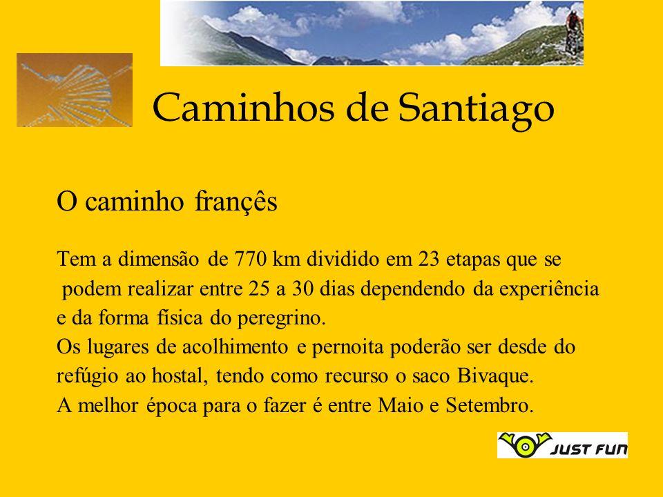 Caminhos de Santiago O caminho françês Tem a dimensão de 770 km dividido em 23 etapas que se podem realizar entre 25 a 30 dias dependendo da experiênc