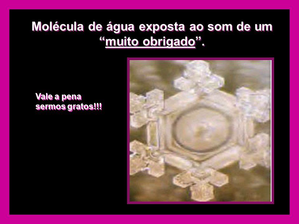 A mesma molécula de água exposta ao som de um Rock Heavy Metal. A mesma molécula de água exposta ao som de um Rock Heavy Metal. ??