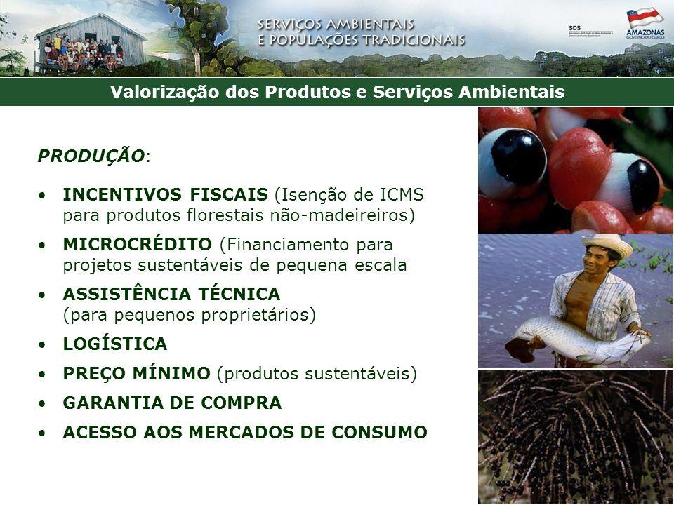 Valorização dos Produtos e Serviços Ambientais PRODUÇÃO: INCENTIVOS FISCAIS (Isenção de ICMS para produtos florestais não-madeireiros) MICROCRÉDITO (Financiamento para projetos sustentáveis de pequena escala ASSISTÊNCIA TÉCNICA (para pequenos proprietários) LOGÍSTICA PREÇO MÍNIMO (produtos sustentáveis) GARANTIA DE COMPRA ACESSO AOS MERCADOS DE CONSUMO