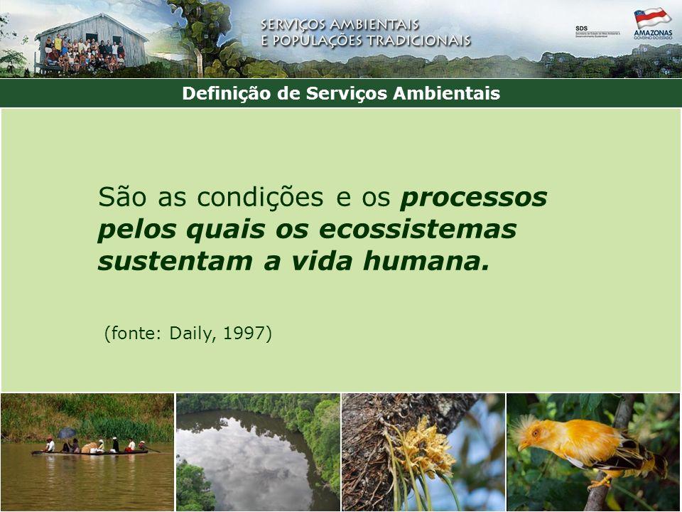 São as condições e os processos pelos quais os ecossistemas sustentam a vida humana.