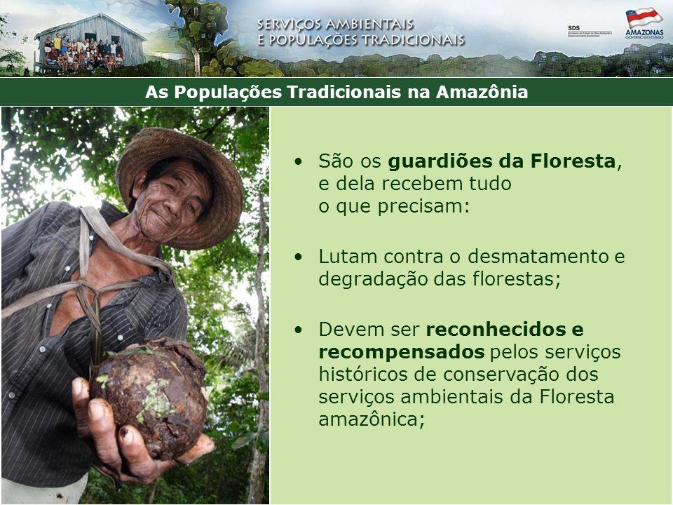 São os guardiões da Floresta, e dela recebem tudo o que precisam: Lutam contra o desmatamento e degradação das florestas; Devem ser reconhecidos e recompensados pelos serviços históricos de conservação dos serviços ambientais da Floresta amazônica; As Populações Tradicionais na Amazônia