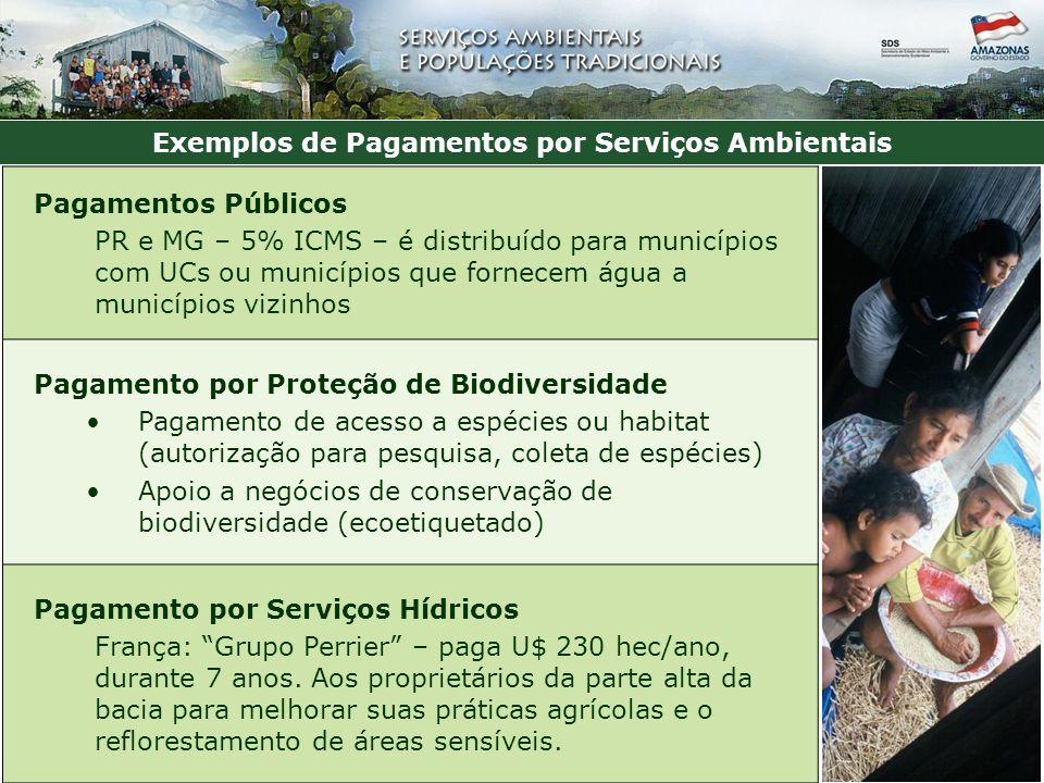 Exemplos de Pagamentos por Serviços Ambientais Pagamentos Públicos PR e MG – 5% ICMS – é distribuído para municípios com UCs ou municípios que fornecem água a municípios vizinhos Pagamento por Proteção de Biodiversidade Pagamento de acesso a espécies ou habitat (autorização para pesquisa, coleta de espécies) Apoio a negócios de conservação de biodiversidade (ecoetiquetado) Pagamento por Serviços Hídricos França: Grupo Perrier – paga U$ 230 hec/ano, durante 7 anos.