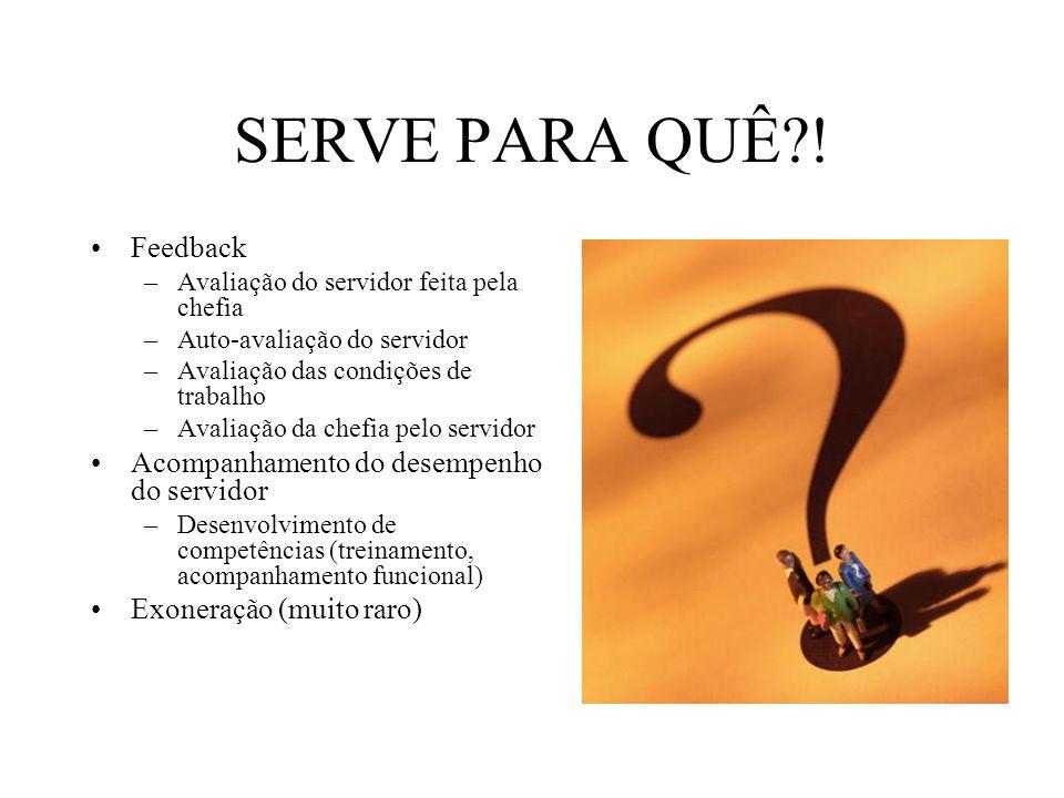 Feedback –Avaliação do servidor feita pela chefia –Auto-avaliação do servidor –Avaliação das condições de trabalho –Avaliação da chefia pelo servidor
