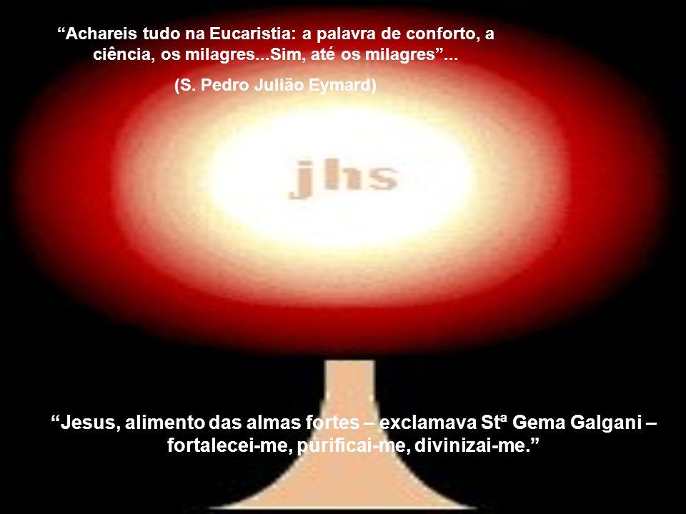 Achareis tudo na Eucaristia: a palavra de conforto, a ciência, os milagres...Sim, até os milagres...