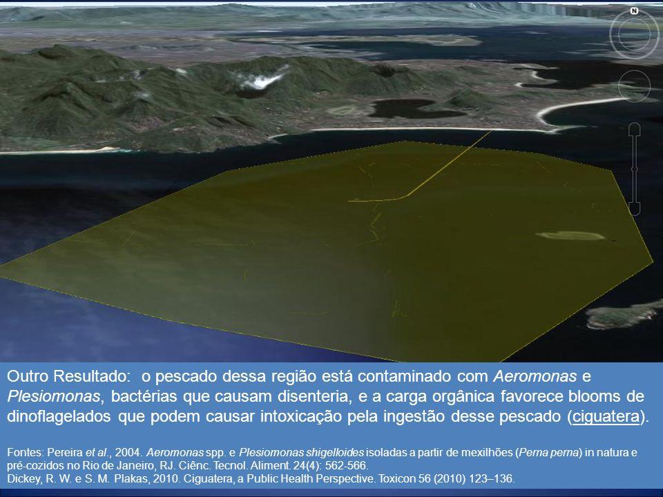 17 Outro Resultado: o pescado dessa região está contaminado com Aeromonas e Plesiomonas, bactérias que causam disenteria, e a carga orgânica favorece