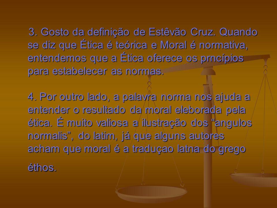 3.Gosto da definição de Estêvão Cruz.