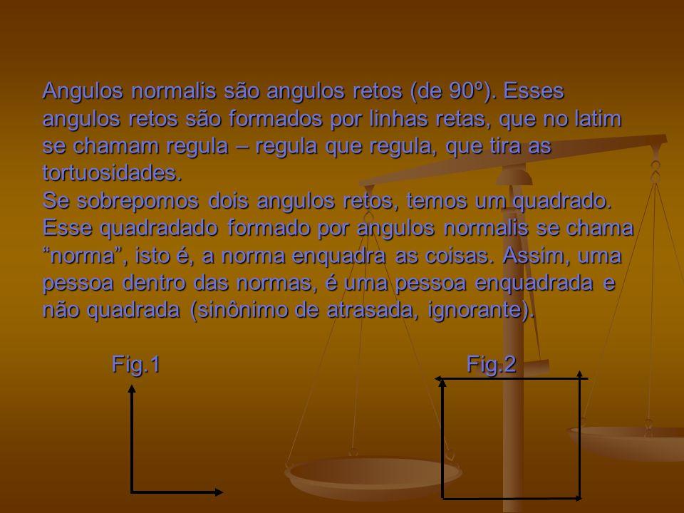 Angulos normalis são angulos retos (de 90º).