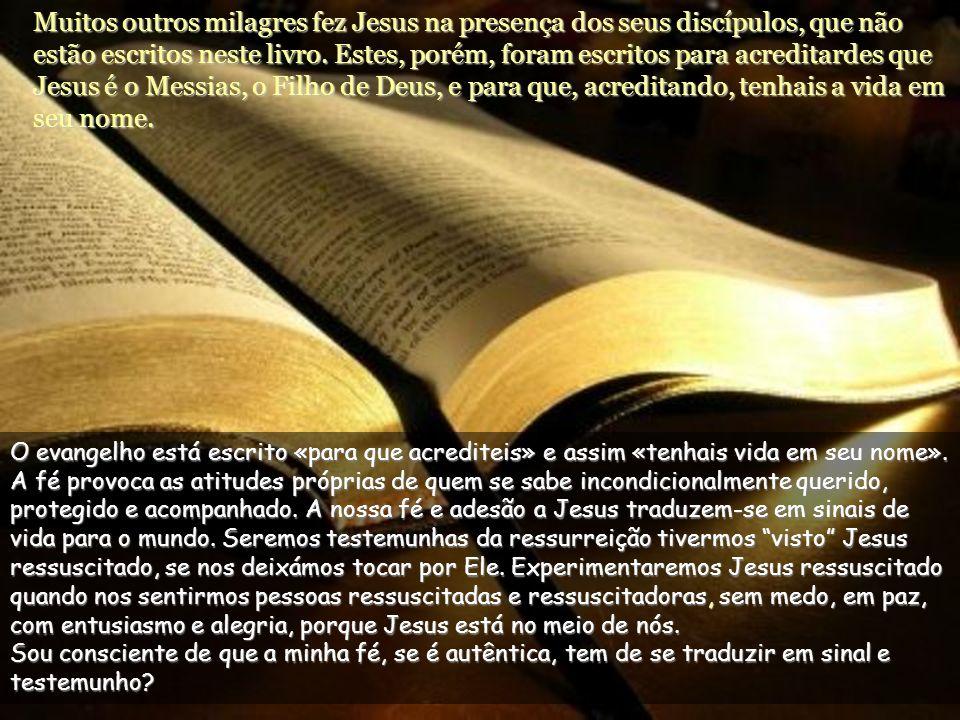 Disse-lhe Jesus: Porque Me viste acreditaste: felizes os que acreditam sem terem visto. A dúvida de Tomé consegue o grande dom da última bem-aventuran