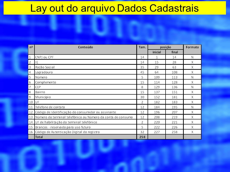 Lay out do arquivo Dados Cadastrais