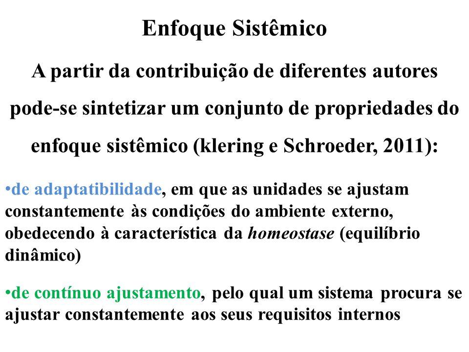 Enfoque Sistêmico A partir da contribuição de diferentes autores pode-se sintetizar um conjunto de propriedades do enfoque sistêmico (klering e Schroe